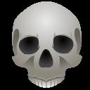 File:Skully.png