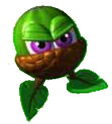 File:Evil acorns.png