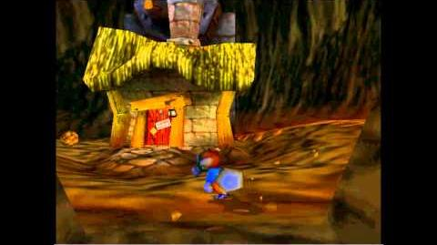 Conker's Bad Fur Day Glitches