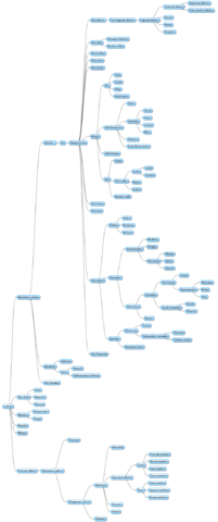 File:UnnamedPhylogeny.png