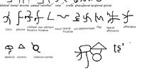 Ayeyarok'þ/script