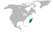 Ivalice in North America