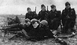 Nordish volunteer defence forces in 1940