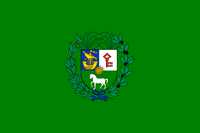 ComarcaElVerdflag
