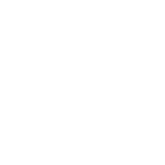 White Dionic Rose