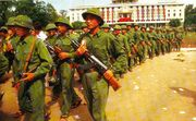 NVA Troops