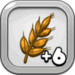 Good Year's Wheat Harvest 6