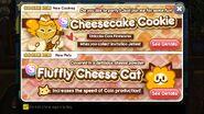Cheesecake fluffycat newsletter