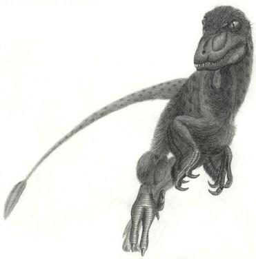 File:371px-Pyroraptor olympius.jpg