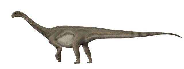 File:Patagosaurus.jpg