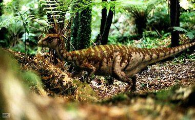 Leaellynasaura 1