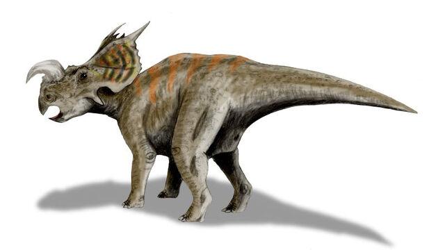 File:Einiosaurus BW.jpg
