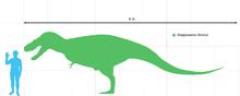 File:220px-Gorgosaurusttttal.png
