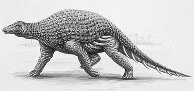 Silvisaurus