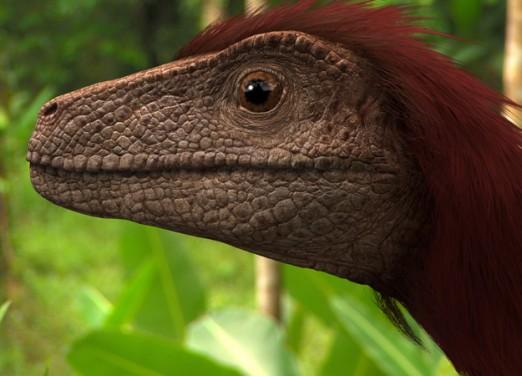 File:522px-Pyroraptor-olympius-dinosaur-picture.jpg