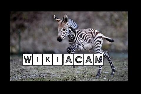 Archivo:Wikia-Visualization-Add-7,esacam.png