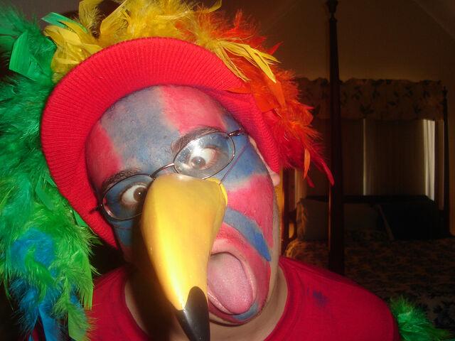 File:Parrot Costume (2).jpg