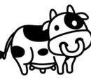 Adult Cow