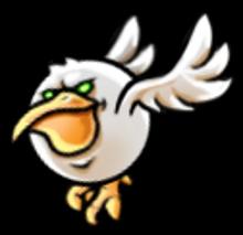 Bird albatross fly-0