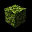 Leaf Jungle 02
