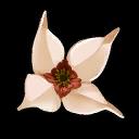 Flower Autumnwood