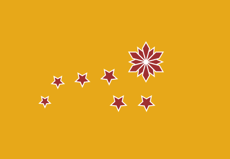File:Chinese federation flag.png