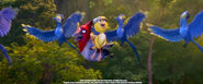 Discover the Forest with Rio 2.mp4 000025458