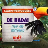 Learn portuguese with Rafael
