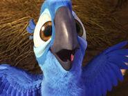 Mainpage-Navmap-Thumb-Blu-(chick)