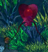 File:Pest Jellyfish.PNG