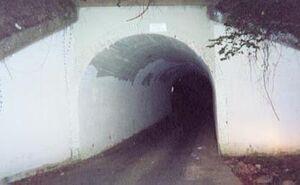 Bunnymanbridge