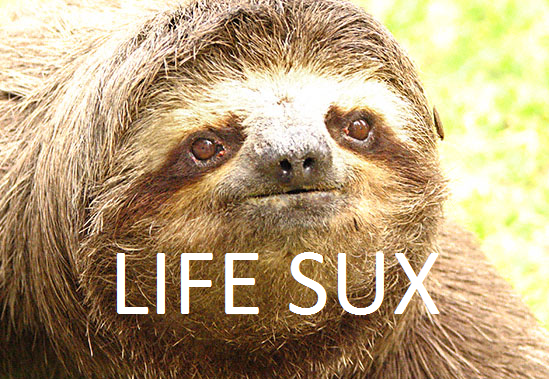 File:SLOTH.png