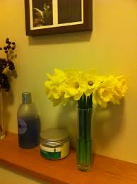 File:Daffodils.jpg