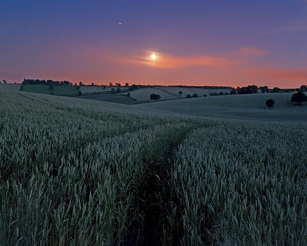 File:Moon over wheat fields.jpg