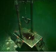 Trap Pendulum