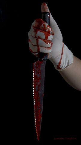 File:Bloody knife009copy1.jpg