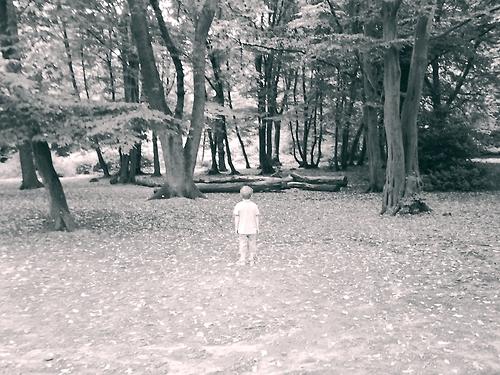 File:Lost boy.jpg