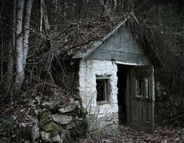 House in woods2