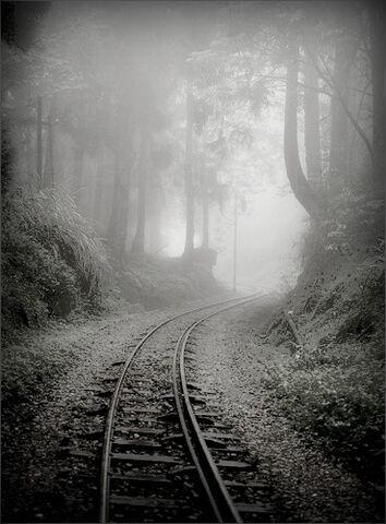 File:Abandoned railway.jpg