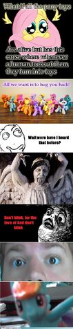 File:My-little-pony-friendship-is-magic-brony-weeping-angels-in-pony-form.jpg