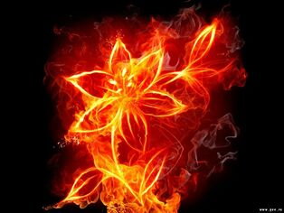 Holder of Flame Flower