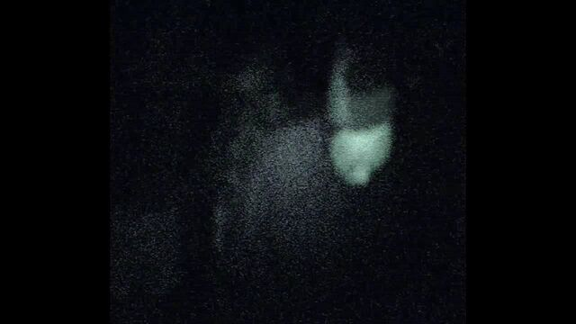 File:1st Sighting.jpg