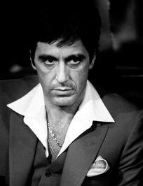 Pacino-307x400