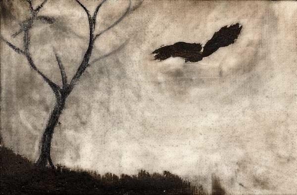 File:Crow3.jpg