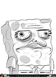 Sponge gusta