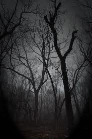 File:Creepywoods.jpg