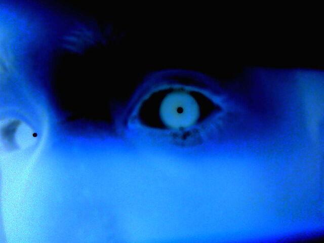 File:Negative Eye.jpg