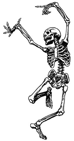File:Skeleton-clip-art-15.jpg