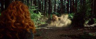 Twilight-newmoon-victoria vs wolf.jpg
