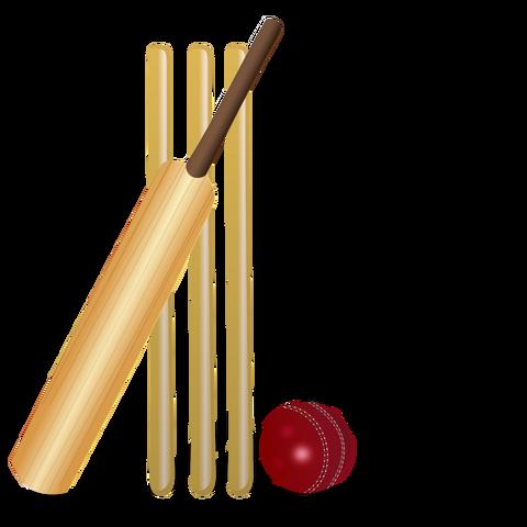 File:Wikia-Visualization-Main,cricketgame.png